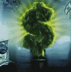 carbon-poker-super-money-tree