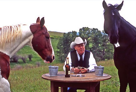 Horses Playing Poker