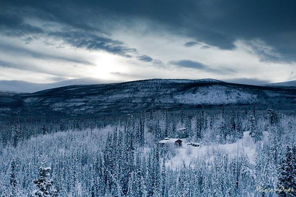Poker in the Yukon - Countryside in Winter